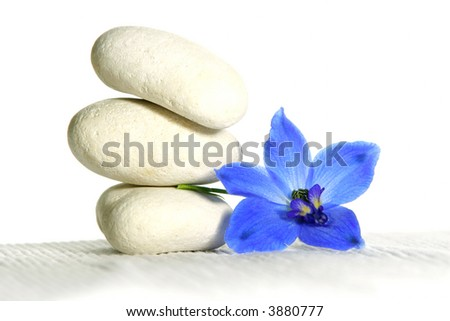 White spa stones and blue flowers - stock photo
