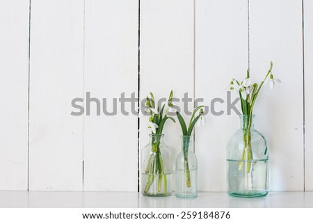 White spring flowers snowdrops in vintage glass bottles on white  barn wall background, cottage interior decoration - stock photo