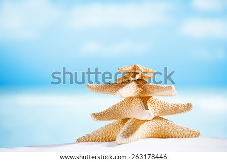white starfish with ocean, beach, sky and seascape, shallow dof - stock photo