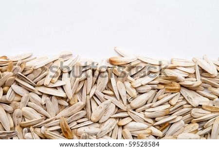 white sunflower seeds - stock photo