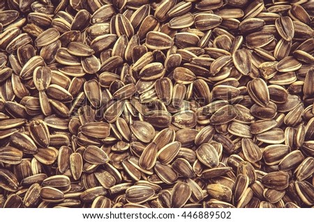 White sunflower seeds. Healthy food on the pile, may be used as background.