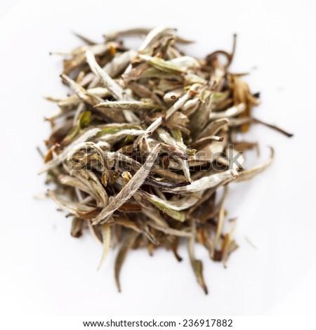 white tea - stock photo