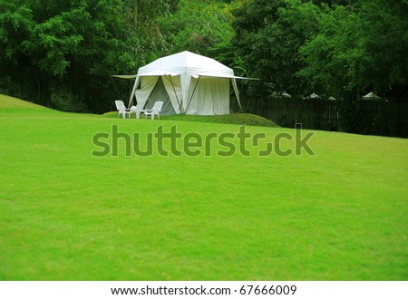 white tent on green grass yard