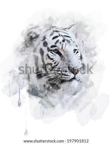 White Tiger Portrait. Digital Painting - stock photo