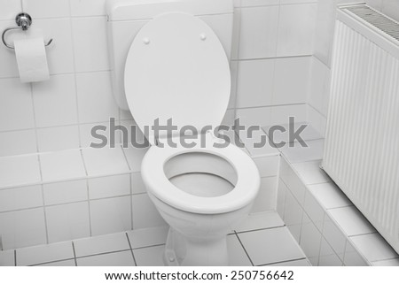 White Toilet Bowl In A Clean Hygienic Bathroom - stock photo