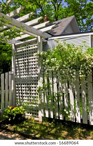 White trellis and fence with flowering bridal wreath shrub in a garden - stock photo
