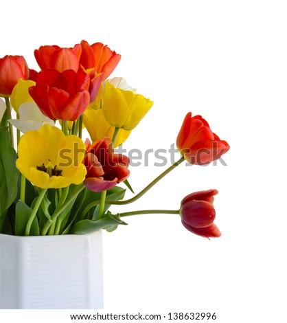 white vase with tulips - stock photo