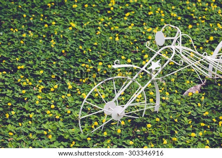 White vintage bicycle as decoration on Pinto Peanut in garden - stock photo
