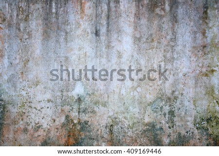 White wall background and texture from moss - stock photo