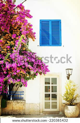White wall of houses and bloom bougainvilia  on a hot summers day. - stock photo
