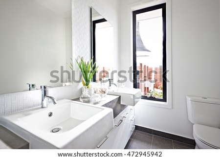 White Washroom Sink And Mirror Near A Green Plant Illuminated With Sunlight  Coming From The Glass