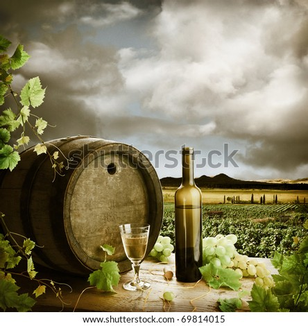 White wine and vineyard in vintage style - stock photo
