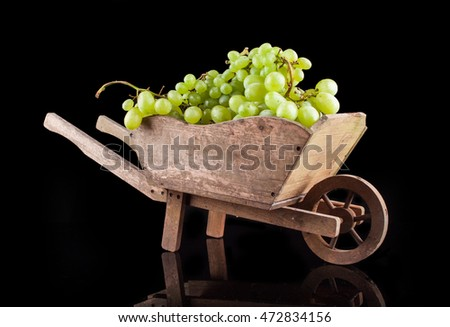 white wine grapes on a black background in a wooden wheel