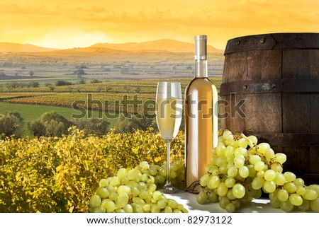 white wine with barrel on vineyard - stock photo