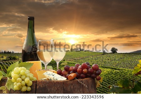 White wine with barrel on vineyard in Chianti, Tuscany, Italy - stock photo