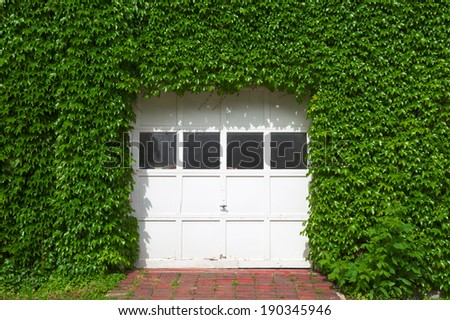 white wooden garage covered with ivy - stock photo