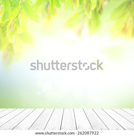 White wooden paving with blurred nature background. - stock photo