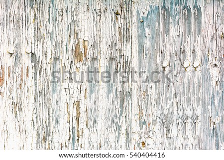 White wooden texture, wood background with old paint peels
