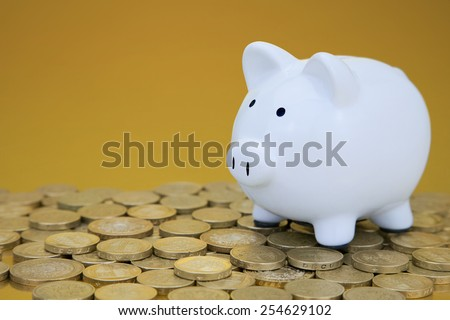 whity piggy bank on one pound coins - stock photo