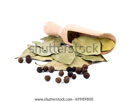 Whole allspice berries, bay leafs and wooden shovel on white background - stock photo