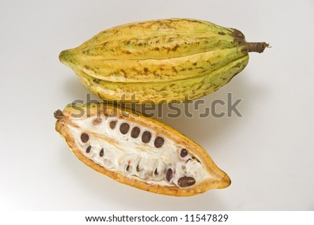 Whole and cross section of ripe cacao fruit - stock photo