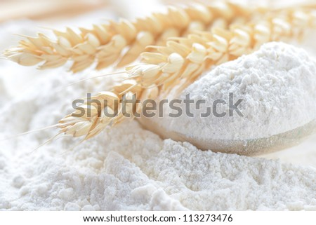 whole flour and wheat ears - stock photo