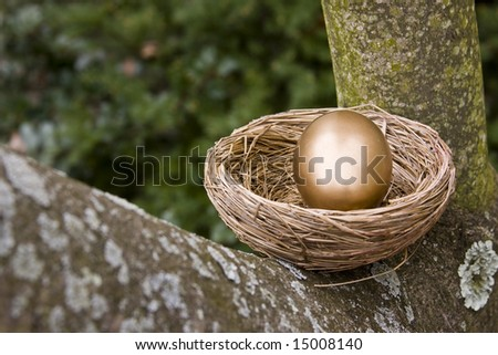 Whole Gold Egg in Nest.