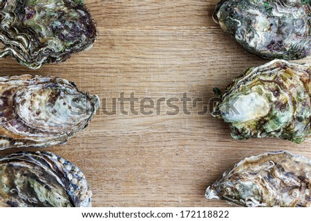 Whole oysters on wood - stock photo