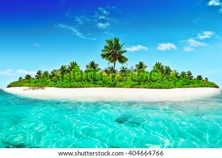 Whole uninhabited and wild subtropical isle with palm trees  within atoll in Indian  Ocean in a summer day.  - stock photo