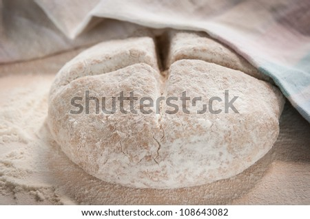 wholemeal dough - stock photo