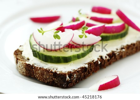 Wholesome sandwich with cheese,  garden radish and  cucumber-Healthy Eating - stock photo