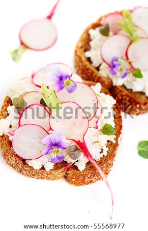 Wholesome sandwich with cheese, garden radish -Healthy Eating - stock photo