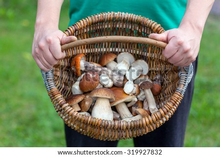 Wicker basket of fresh mushrooms in hands. shallow depth of field - stock photo
