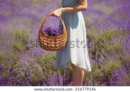 Wicker basket with a lavender  - stock photo