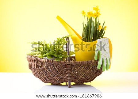 wicker basket with easter flower - stock photo