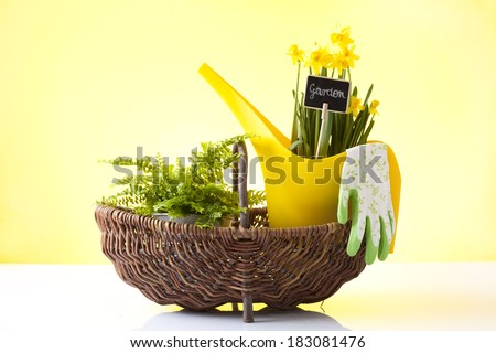 wicker basket with spring flowers - stock photo