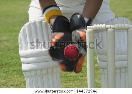Wicket keeper standing behind stumps and catching a ball - stock photo