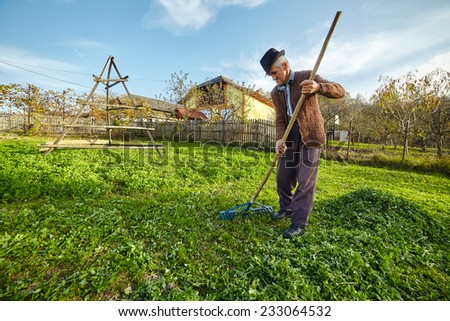 Wide angle action shot of a farmer gathering mowed grass with a rake to feed the animals - stock photo