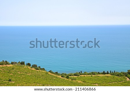 Wide-angle coastal seascape: calm turquoise sea behind the hilly green coastline with the wine vineyards. Black Sea scenes and scapes, Crimea - stock photo