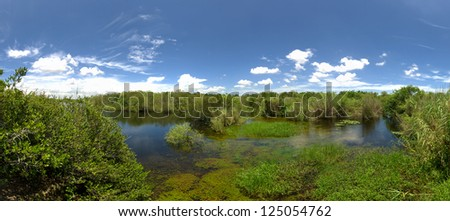 wide angle panoramic view of landscape in the Everglades National Park, Florida, USA - stock photo