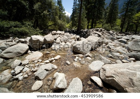 Wide angle view of a stream in a forest.