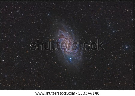 Wide Field View of the Triangulum Galaxy