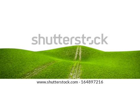 Wide image of green grass field and road. Isolated background... - stock photo