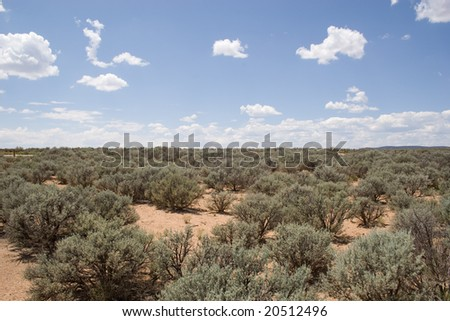wide open space of desert land with nothing but sagebrush