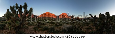 wide panorama of red rocks mountains lit by morning sunlight with joshua trees - stock photo