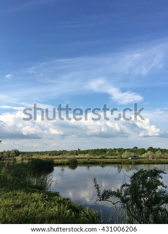 Wide river with reflection and green bush on coasts and blue cloudy sky - stock photo