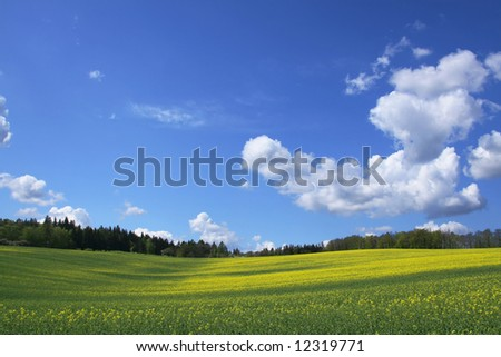 Wide spring view - stock photo