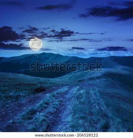 wide trail near the lawn in high mountains at night in full moon light - stock photo