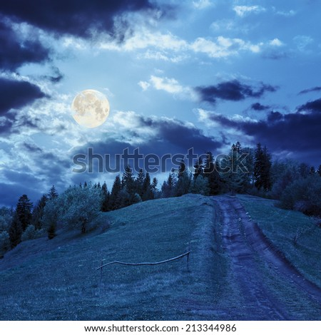 wide trail with a wooden fence near the lawn in green forest with pine trees  in mountains at night in full moon light - stock photo