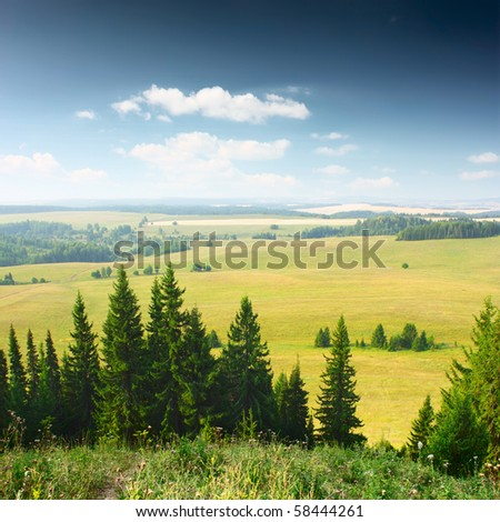 Wide valley with groups of trees. View from top of mountain - stock photo